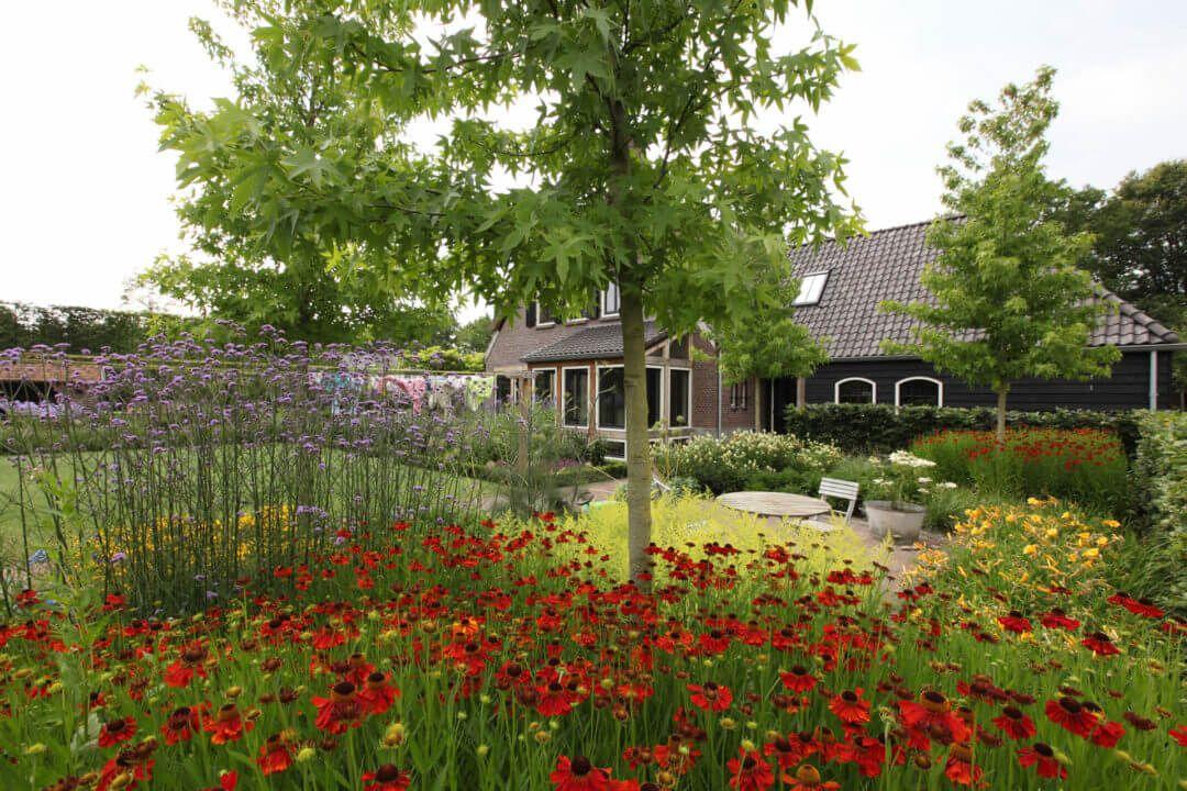 Helmond – Romantische tuin